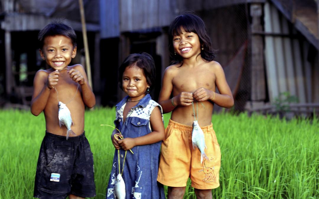 Световен ден на прехраната: Ще присъства ли рибата и на трапезата на бъдещите поколения?