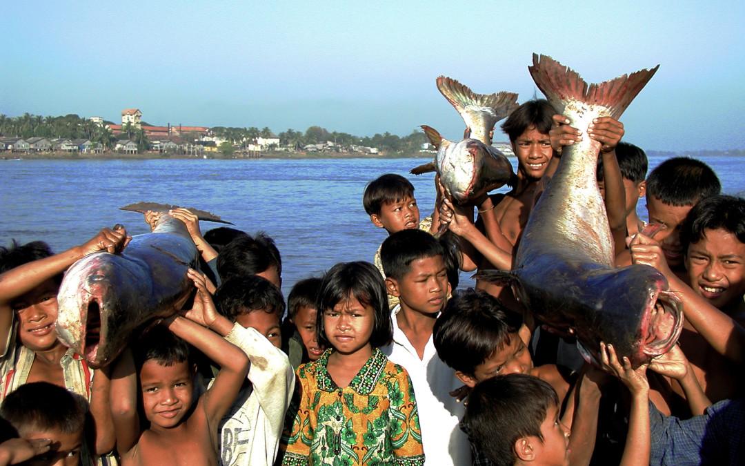 WWF lanza un código ético para luchar contra la explotación humana en las pesquerías en países en vías de desarrollo