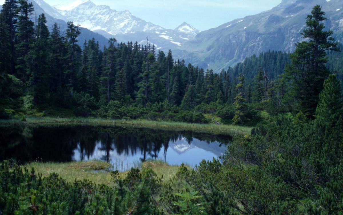 Hohe Tauern National Park, in the Austrian Alps. © Michèle Dépraz / WWF