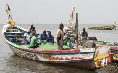 Как мерките на ЕС срещу незаконния риболов промениха търговията с морска храна?