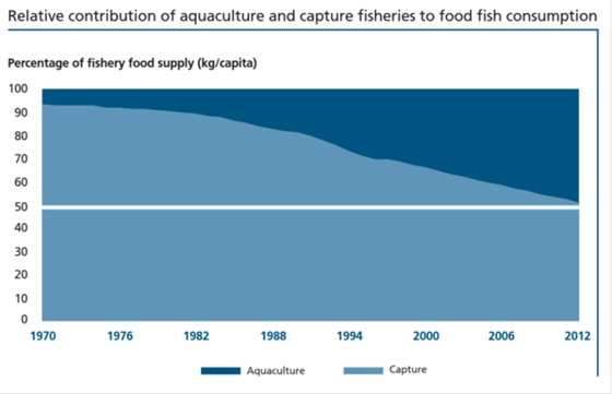 Relative contribution of aquaculture and capture fisheries to food fish consumption [3]