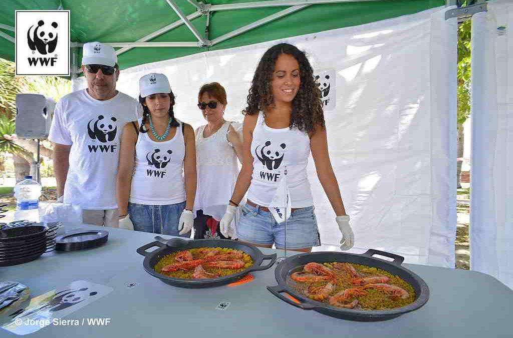 España, un país de gran tradición en el consumo de pescado