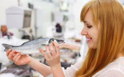 Karfreitag: WWF empfiehlt Bio-Fisch aus Österreich