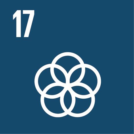 E_SDG_Icons_NoText-17