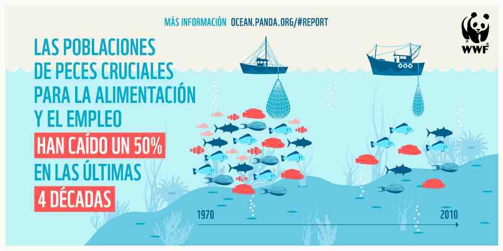 El colapso de las pesquerías y la mala salud del océano amenazan el suministro de alimentos