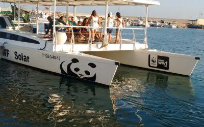 Campaña Embárcate con el WWF Solar: Consumo responsable de pescados y mariscos