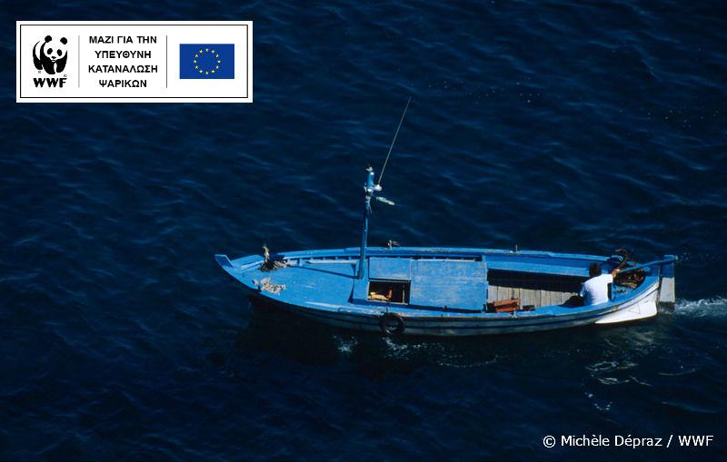 Παγκόσμια Ημέρα Αλιείας σήμερα… Μάθε πώς να επιλέγεις ψαρικά με οδηγό το Fish Guide