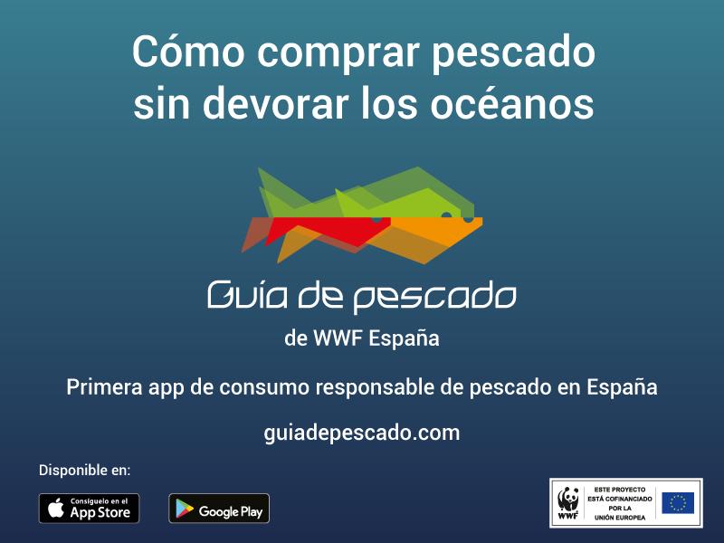 WWF presenta la primera app para consumir pescado de forma responsable en España