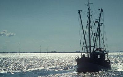 ЕК предлага запазване на риболовните квоти за Черно море през 2017 г.