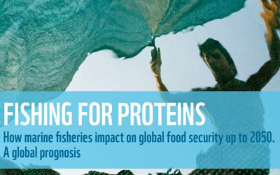 WWF Report: Uncertain future forecast for millions of people who depend on fish for protein