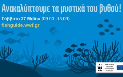 Το WWF σε προσκαλεί σε ένα δημιουργικό φεστιβάλ παιχνιδιών που μυρίζει θάλασσα & καλοκαίρι