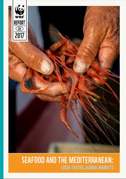 Novo relatório da WWF: a maioria do pescado que se come nos países do Mediterrâneo e em Portugal é importado