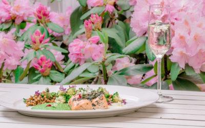 """WWF България и """"Щастливото прасе Food & Cocktails"""":  Заедно за отговорно потребление на риба и морски деликатеси"""
