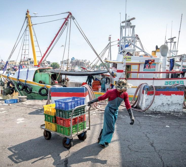 Auswirkungen der EU-IUU-Verordnung auf Handelsströme von Fisch und Meeresfrüchten