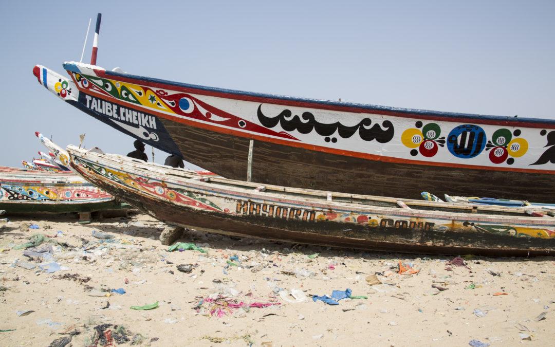 Νέα μελέτη του WWF με τίτλο «Σενεγάλη: συνδιαχείριση της αλιείας χταποδιού και πράσινου αστακού»