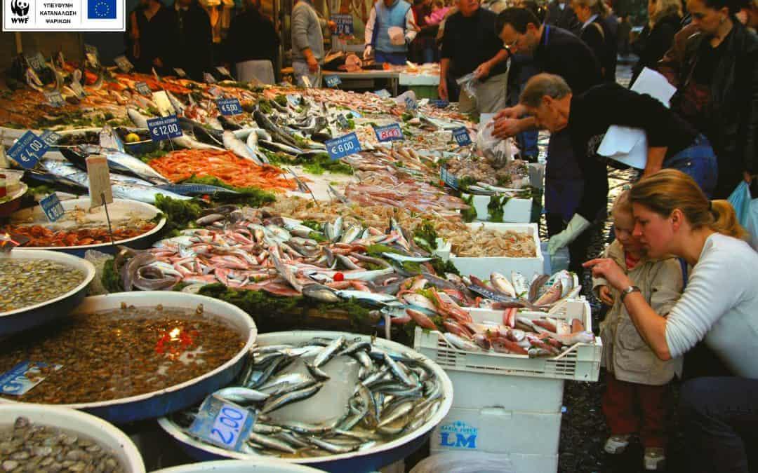 Το μενού έχει θαλασσινά; Με το Fish Guide ξέρεις τι να προσέξεις και τι να επιλέξεις!