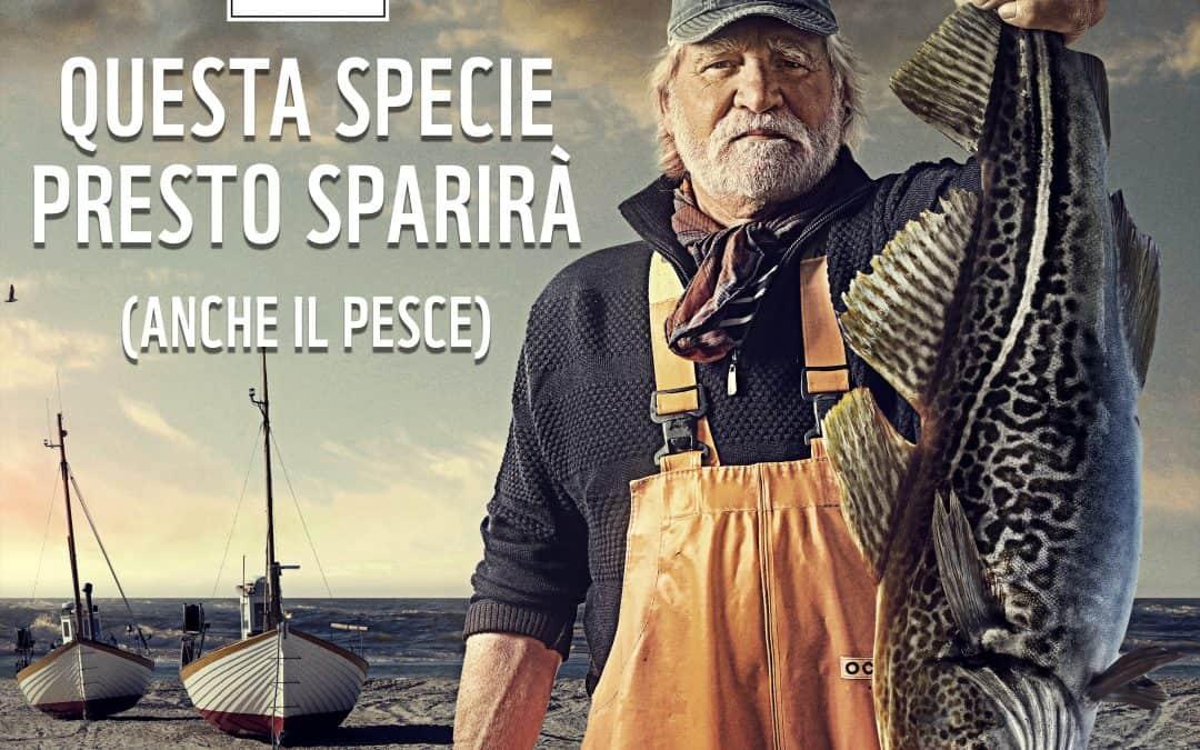 GIORNATA MONDIALE DELL'ALIMENTAZIONE WWF LANCIA SOS OCEANI: RISORSE AL LIMITE. 800 MILIONI DI PERSONE A RISCHIO PER SFRUTTAMENTO INSOSTENIBILE.