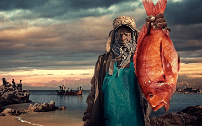 World Food Day: Fish gone, people gone