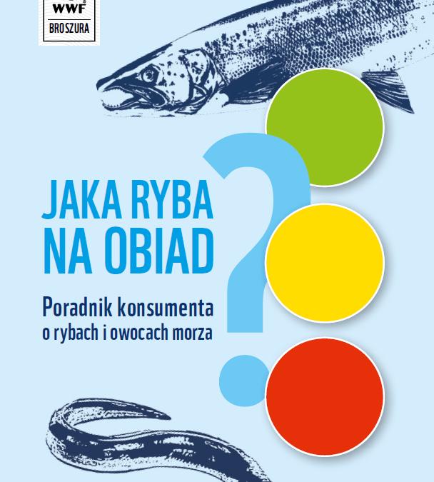 """Ochrona mórz i oceanów przy sklepowej półce? Tak, to możliwe! – jeśli skorzystasz z wytycznych nowego poradnika rybnego WWF """"Jaka ryba na obiad?"""""""
