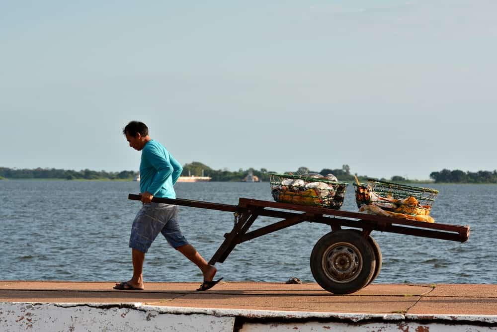 ЕС пуска софтуер, който да пази пазара от нерегламентирани доставки на морска храна