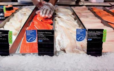 Потребителите искат да знаят каква риба консумират, показва проучване