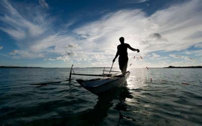 Czy Europa wyczerpała właśnie swoje zasoby ryb?