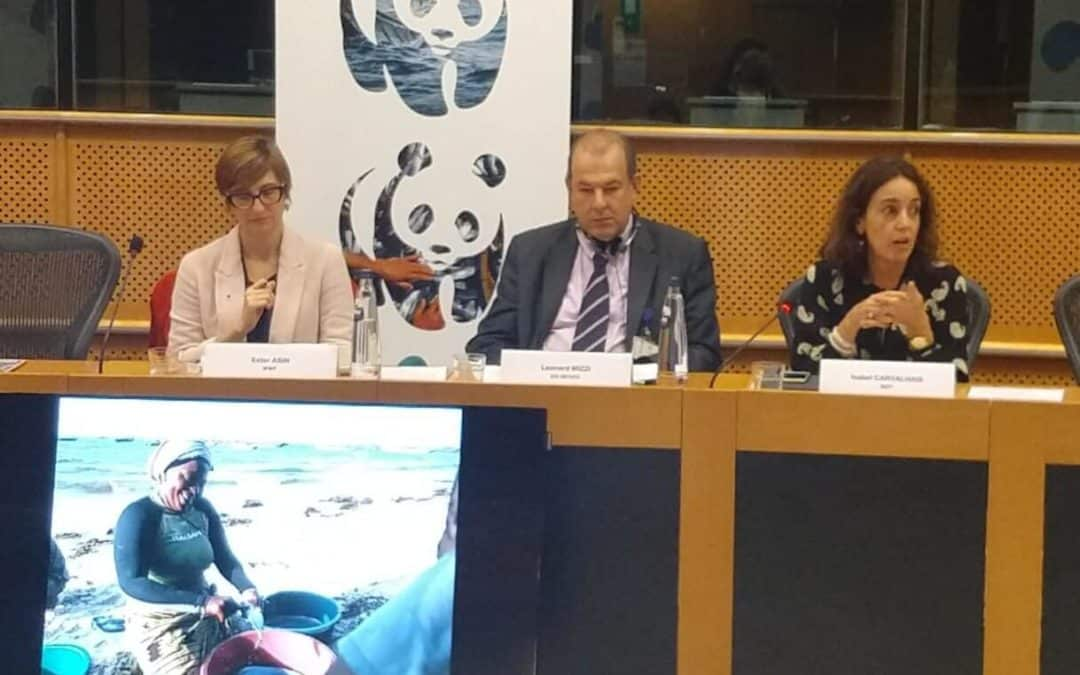 The roles of women must be reinforced in EU marine policies