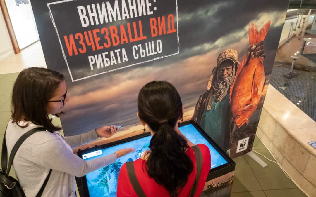 WWF гостува на Балев Био Маркет в The Mall в подкрепа на устойчивата морска храна