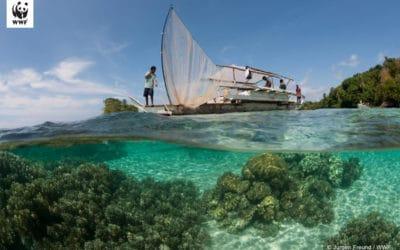 Zmiana klimatu: środowisko morskie i rybołówstwo