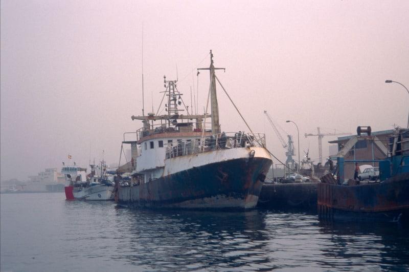 Заради Covid-19 ЕС приема спешни мерки в областта на рибарството и аквакултурите