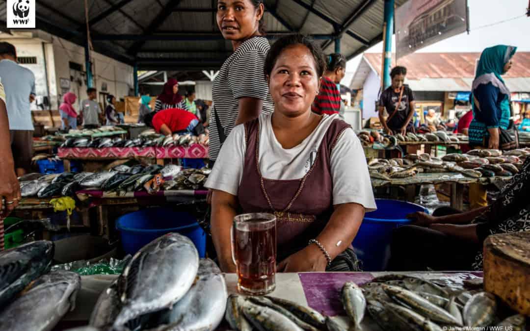 Sieć bezpieczeństwa dla rybołówstwa