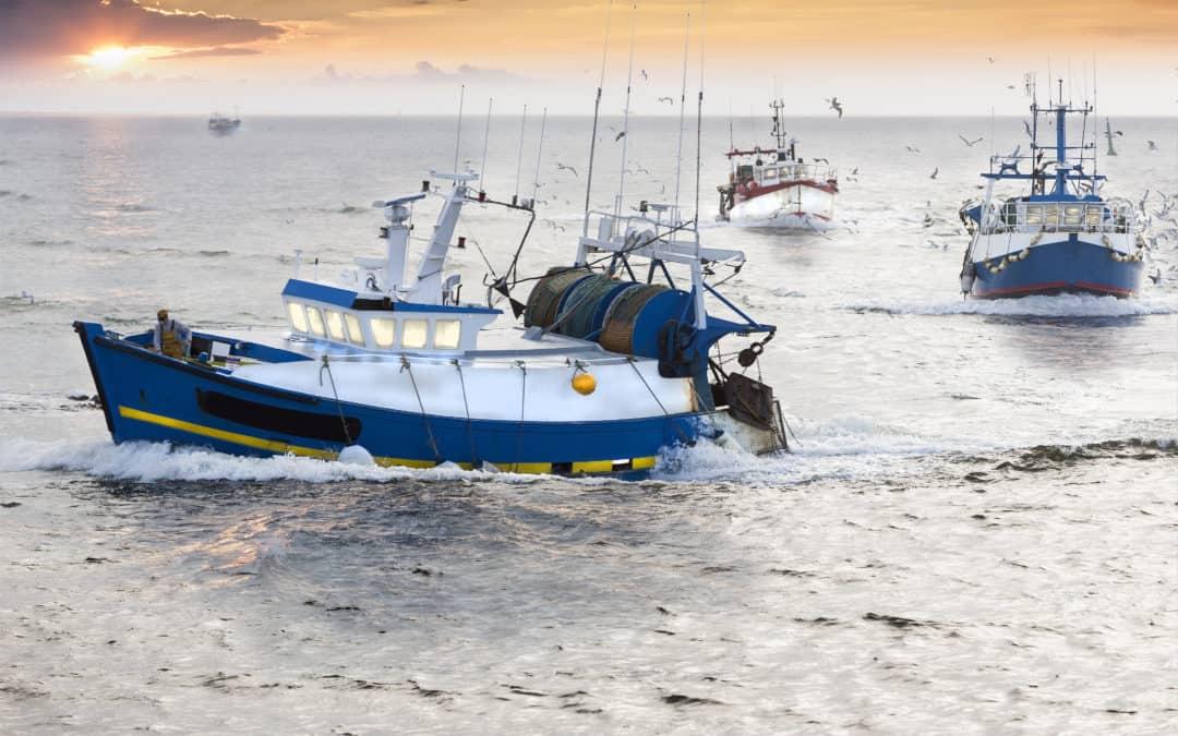 Пандемията Covid-19 засегна сериозно риболовния сектор