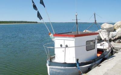 Na bezrybiu…nad Bałtykiem