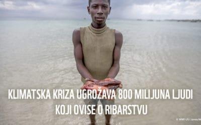 Istraživanje: klimatske promjene ugrožavaju mali gospodarski ribolov, potrebne su hitne mjere