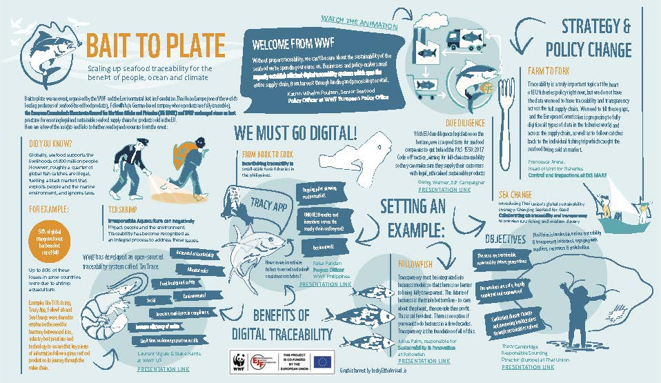 Seafood industry and policy makers call for improved seafood traceability at EU level